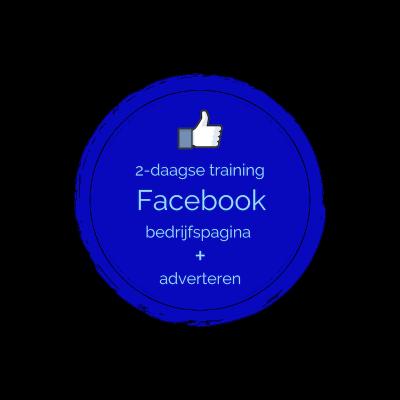 Training de ultieme Facebook bedrijfspagina en adverteren